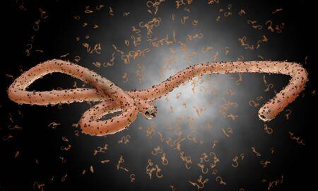 virus organism: Ebola virus, bacteria, virus , epidemic. Realistic 3d render virus Ebola with blood cell inside organism.