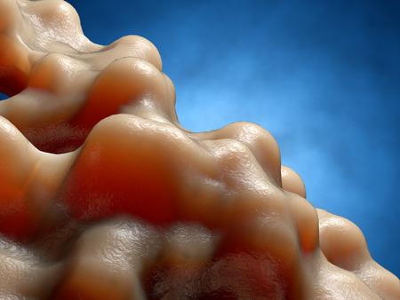 organism: Inside organism view. Organic surface. 3d render