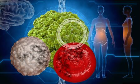hpv: Virus, bacteria, microbe. medical anatomy concept with hud elements