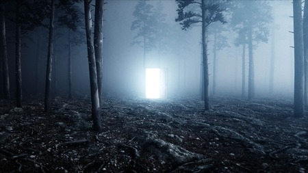 Glowing door in fog night forest. Light portal. Mistic and magic concept. 3d rendering. Archivio Fotografico