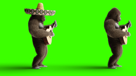 Funny brown gorilla play the guitar. Super realistic fur and hair. Green screen. 3d rendering. Stock Photo