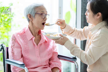 Young female caregiver or daughter feeding senior woman or mother in wheelchair at retirement house or home,asian elderly patient with woman caretaker,help,service concept Stockfoto