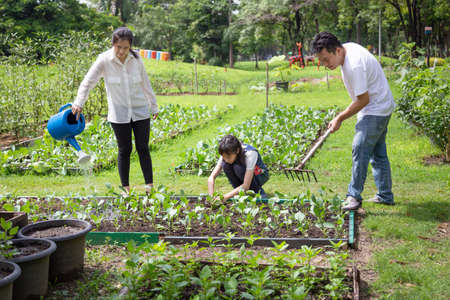 Happy asian family,parents help,care,daughter to grow vegetables in farm,father working using rake in organic garden,mother watering plants with watering can,vegetables gardening,agriculture,activites concept