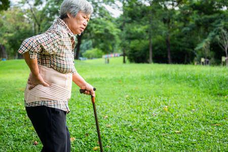 Mujer mayor asiática con cinturón de soporte para la espalda para proteger su dolor de espalda, lesión muscular, personas mayores con bastón, mano tocando la cadera con dolor de lumbago, dolor de espalda, dolor de cintura, concepto de problemas de salud