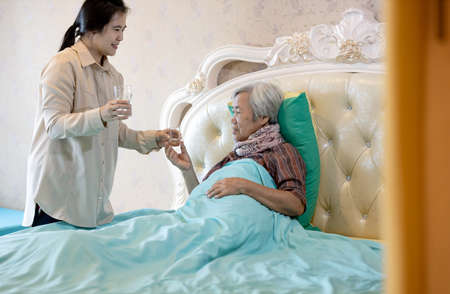 Asian daughter or caregiver hold capsules or medicine pills in hand,giving pills to sick senior mother,elderly woman taking vitamin,nutritional supplements for help healthy at home,health care concept Foto de archivo