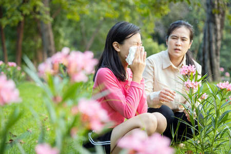 Asian child girl sneezes in paper handkerchief due to pollen allergies,woman allergy to blooming flowers,female teenage have allergic to pollen blowing nose in front of blooming tree in outdoor park