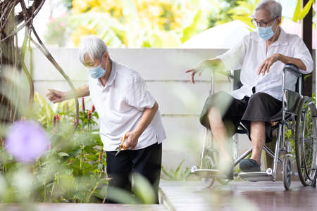 Asian senior women,old elderly are doing tree planting,pruning branches to reduce stress and boredom of staying home,wear protective face masks,new normal life during the COVID-19 Coronavirus pandemic
