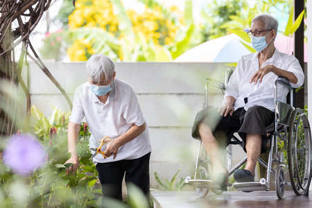 Two asian elderly people wearing face masks,senior woman is pruning branches of flower in the garden while quarantine,social distance by stay home,activities or hobbies at home,reduce stress concept Standard-Bild