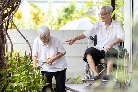 Senior woman pruning branches of flowers,elderly relaxing,enjoying with plants in the garden,happy smiling asian old people doing some gardening,activities,hobbies and leisure during stay at home