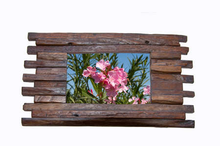art exhibition: Photo frame made from wood