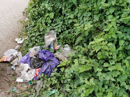 plastic waste on the road with green leaves that thrive