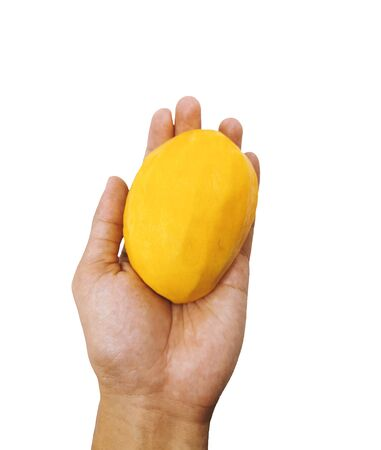 Peeled mango in the left palm isolated on white background. Fresh mango fruit in closeup 免版税图像