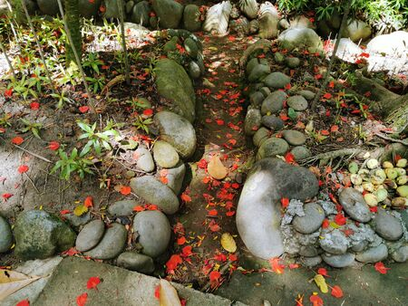 dried leaves and flowers falling in the garden. View of stones and red flowers scattered in the park