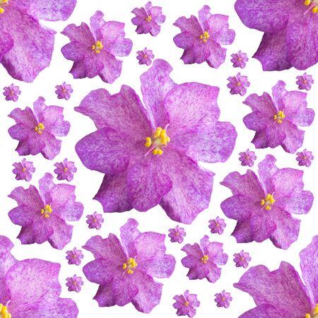 Seamless background of violet violets Banque d'images