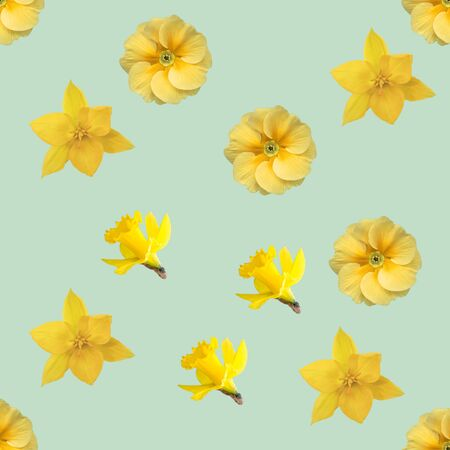 spring flowers seamless background pattern: primrose, daffodil, Tulip Stok Fotoğraf