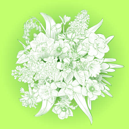 spring primroses card with space for text . spring background flowers.Vector