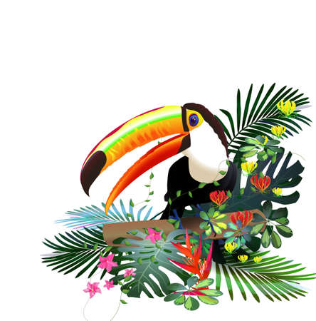 Toucans in the tropical forest of exotic flowers.For design postcards, brochures, banners, advertising.Tourism. Ilustrace