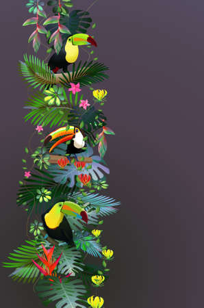 Toucans in the tropical forest of exotic flowers.For design postcards, brochures, banners, advertising.Tourism.