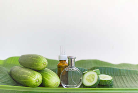 Natural extract Liquid skin care cosmetic in bottle and green cucumber on banana leaf and white background, image with copy space for text or image. Stock Photo