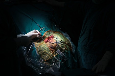 specialization: Surgery in the operating room
