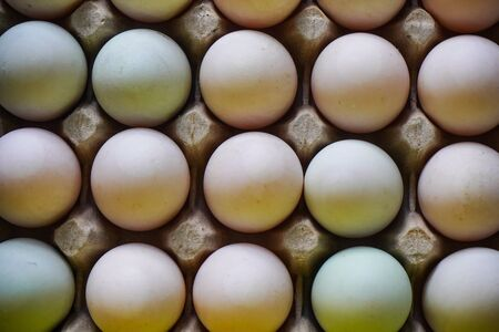 Fresh eggs in egg tray
