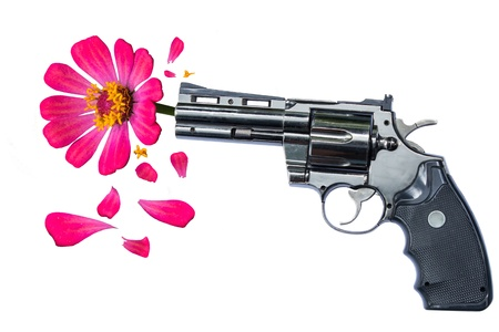 pacifism: Beauty And The Dangerous,Concept For Stop Crime In The World