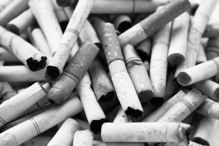 Cigarette Butts Black And White  photo