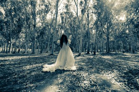 venganza: La venganza de la novia, Misteriosa mujer en vestido blanco en el bosque, Mujer asustadizo en la madera, Horror Fondo para el concepto de Halloween y Cubierta del libro Ideas