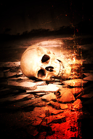 Human skull on ruins place,Horror Background For Halloween Concept And Movie Poster Project Stock Photo