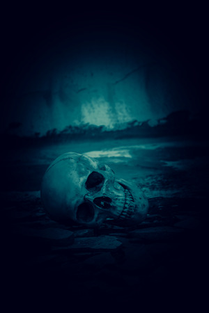 Human skull on ruins place,Horror Background For Halloween Concept And Movie Poster Project Archivio Fotografico