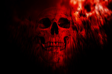 exorcist: Human skull in the woods,Horror Background For Halloween Concept And Movie Poster Project