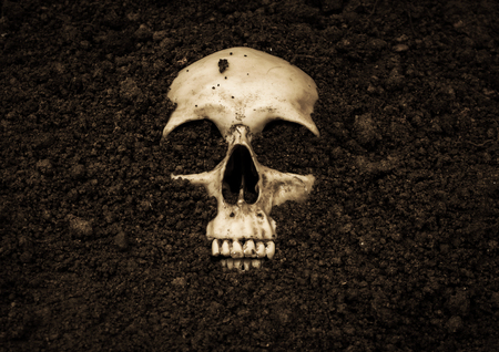 exorcist: Human skull in soil,Horror background for Halloween concept and book cover ideas