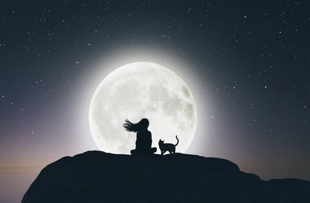 Meisje met de kat op de klif op zoek naar de maan, 3D-rendering
