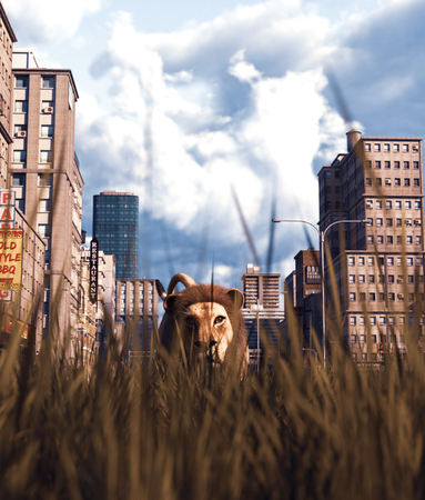 Lion walking in grass field in abandoned city,3d rendering