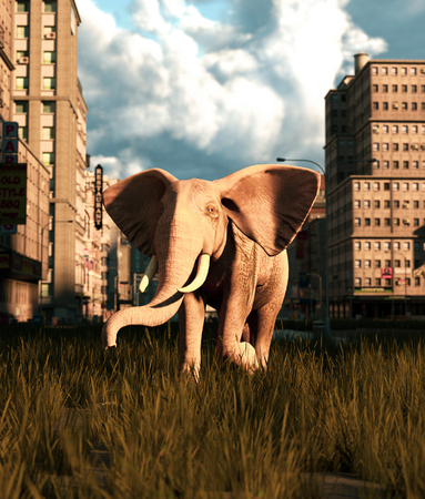 Young elephant walking on the street of the abandoned city,3d rendering Banco de Imagens