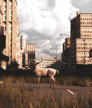 Deer walking on the street of the abandoned city,3d rendering Фото со стока
