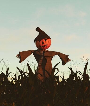 Scarecrow pumpkin in corn field,3d rendering