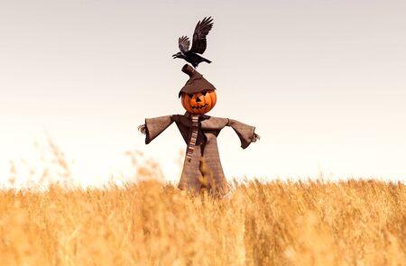 Scarecrow pumpkin in field,3d rendering Stok Fotoğraf