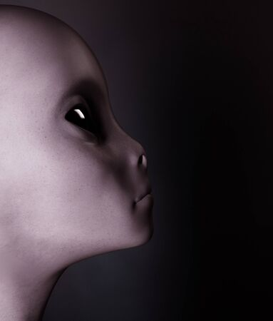 Alien,Woman from the outside world,3d rendering