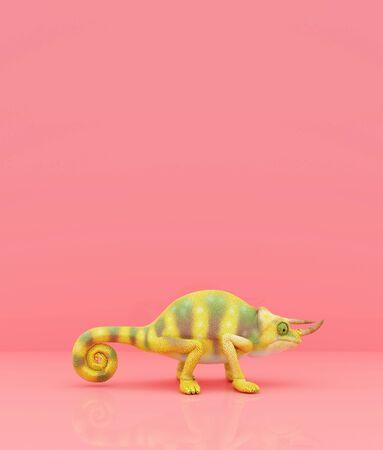 Chameleon on pastel color background,3d rendering
