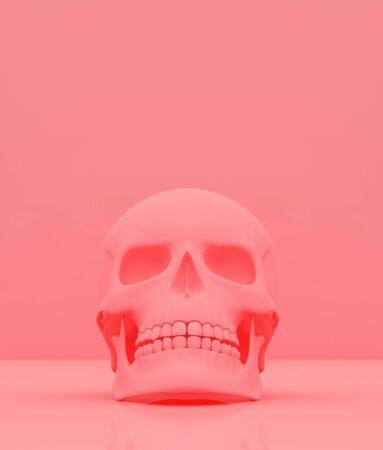 Skull on pastel color background,3d rendering