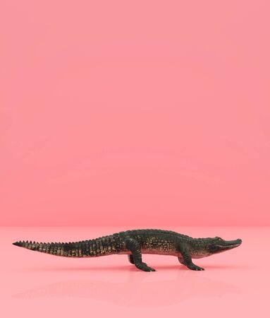 Crocodile on pastel color background,3d rendering Banco de Imagens