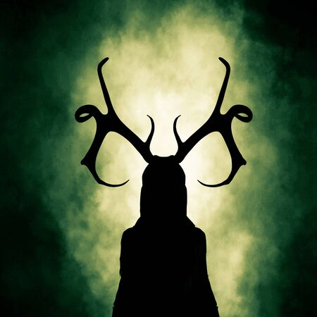 Queen of the woods,silhouette  woman wearing antlers,3d rendering