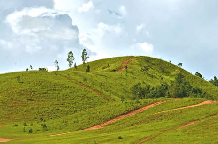 hill grass background Stock fotó - 48852478