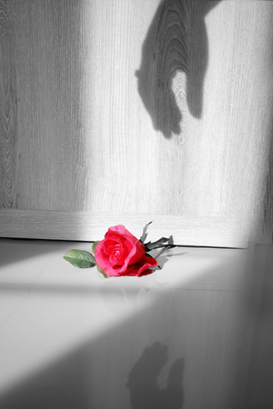 Shadow hand reach the red rose .love cobcept Stock Photo