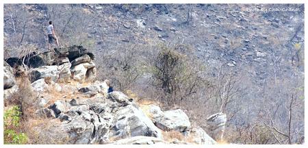 one man stand on limestone mountain Zdjęcie Seryjne