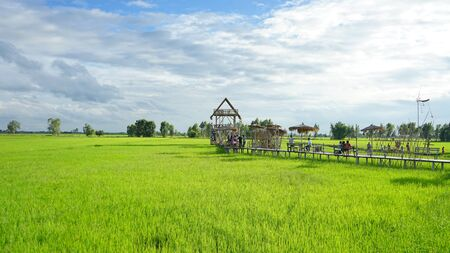 Bamboo hut middle the green fields