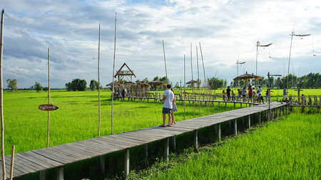 AYUTTAYA , THAILAND - AUGUST, 10, 2019 : THAI tourists at RUKNA CAFE. cafe is landmark of AYUTAYA. THE cafe  is built with bamboo In the middle of the green field. It is popular with tourists. Publikacyjne
