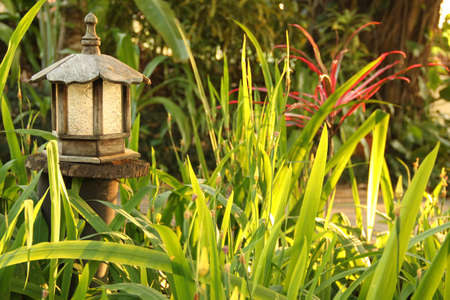 wooden garden lamp photo