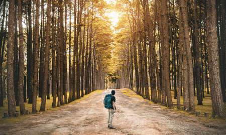 A young guy with a backpack traveler standing in the woods. Back view Imagens
